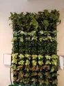 Vertical Garden Green Wall
