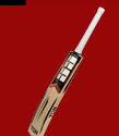 Maximus Cricket Bat