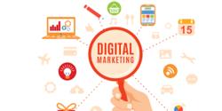 1 -2 Month Seo Digital Marketing, Online