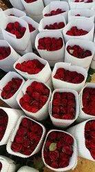 Roses Red Rose Flower