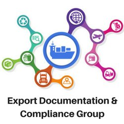Import Documentation Services