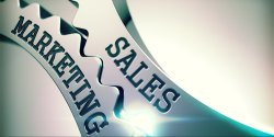 Sales And Marketing Management Service