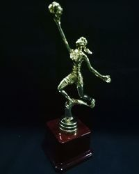 Basket Ball Statue Award Trophy