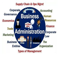 Business Administration Dissertation Writing Consultancy Services
