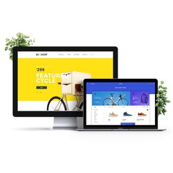 Basic Business Site Corporate Website Designing Services