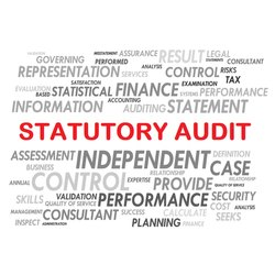 Consulting Firm Statutory Auditing Services, Maharashtra