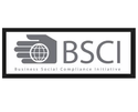 BSCI Consultancy Services