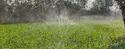 Rain Spray System