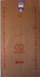 Globe Plywood
