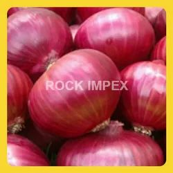 High Quality Onion - View Specifications & Details of Red