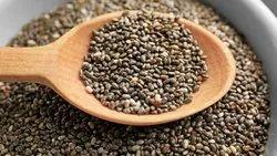 Chia Seeds  - Salvia Hispanica