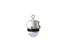 Capella- Z- LED Canopy Light