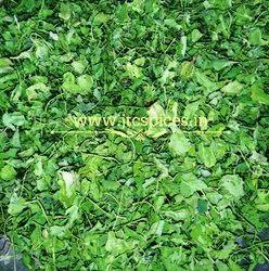 Green Fenugreek Leaf, Packaging Size: 200g