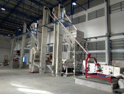 Coffee Dry Processing Plant