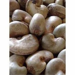 Common Raw Cashew Nuts, Packaging Type: Jute Bag, Packaging Size: 80 Kg