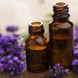Spike Lavender Oil