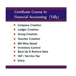 Tally Accounting Course in Raigad