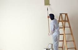 Painting Services For Residential Building