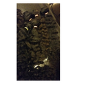 Virgin Human Hair Curly Machine Weft Hair