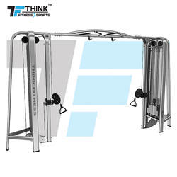 TZ-8018 Back Extension Machine