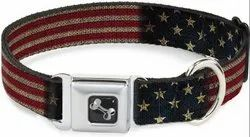 Vea Impex Dog Collar for Clinic Purpose Use