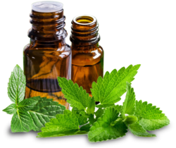 Spearmint Oil USP