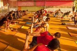 200 Hour Ashtanga Vinyasa Yoga Teacher Training