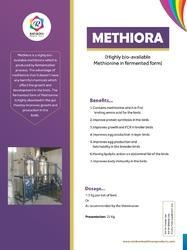 DL-Methionine For Poultry