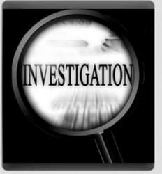Consulting And Investigation Service