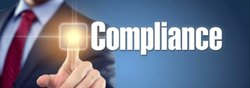 Individual Consultant Banking and Finance ROC Compliance Service
