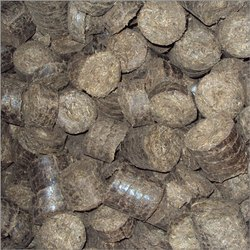 Conventional Biofuel Briquette