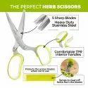 Stainless Steel Blades Scissors Set