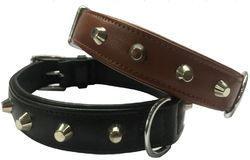 Leather Dog Collar Stafford-Shire Bull Terrier Collar