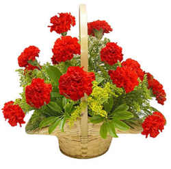 14 Red Carnation Flowers Basket