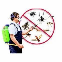 Padmavat Pest Control Services