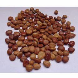 Amaltas Seeds, 25 Kg, Pack Size: 1-10 Kg