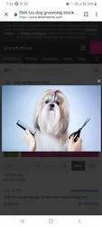 Pet Hair Cut Service