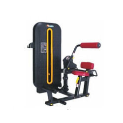 Lower Back Gym Machine