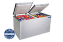 Bluestar Hard Top Freezer