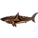 Pine Wood Shark Food Platter