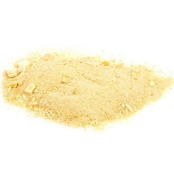 Spray Dried Mango Powder 10:1