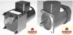 40 W Induction Geared Motor