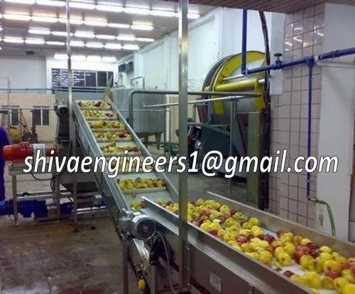 Beverages & Fruit Juice Processing Plant - Juice Processing