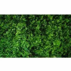 Mat-E Artificial  Wall Grass