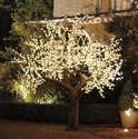 Decorative LED Tree