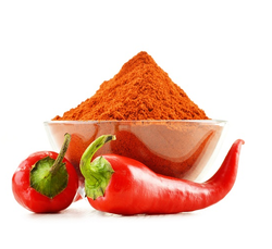 Shreeji Capsicum Extracts, Packaging Type: Drum, Pp Bag