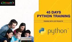 Python Training Services