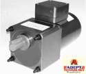 Induction AC Geared Motor