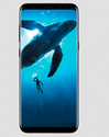Samsung Handsets, Memory Size: 8 Gb