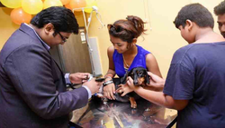 Pet Clinic Service
